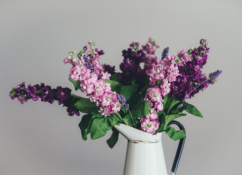 Pink and purple stocks
