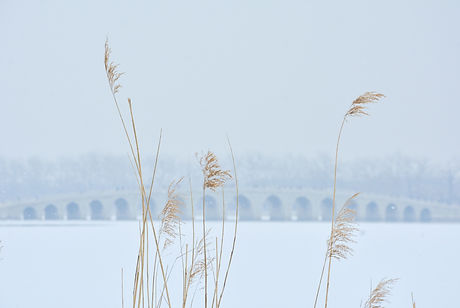 Image by Xu haojie