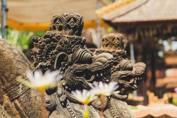 Bali | Image by Paolo Nicolello