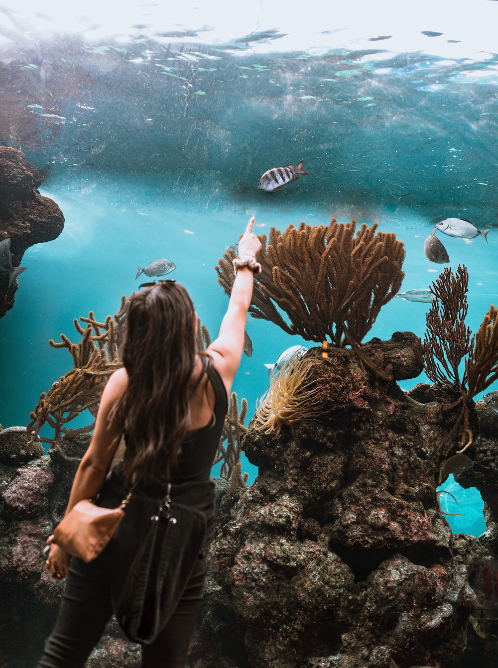 A woman fascinated by the underwater world in an Aquarium in Bermuda