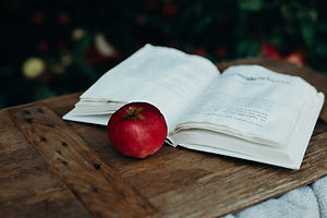 Image by Liana Mikah