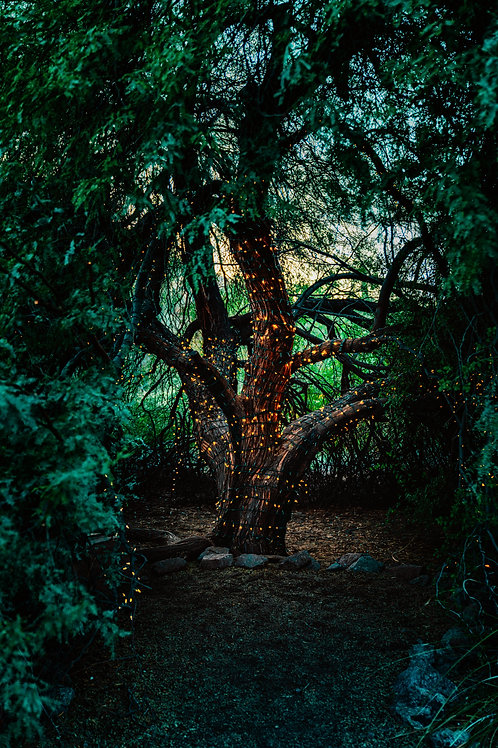 Faery Spirit Healing Reiki - Overcome Challenges and Trials with the Fae