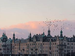 Image by Marten Bjork