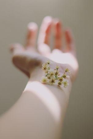 Image by Carolina Heza