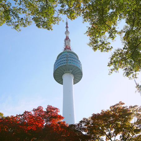 How Much Does it Cost to Study Abroad in Korea
