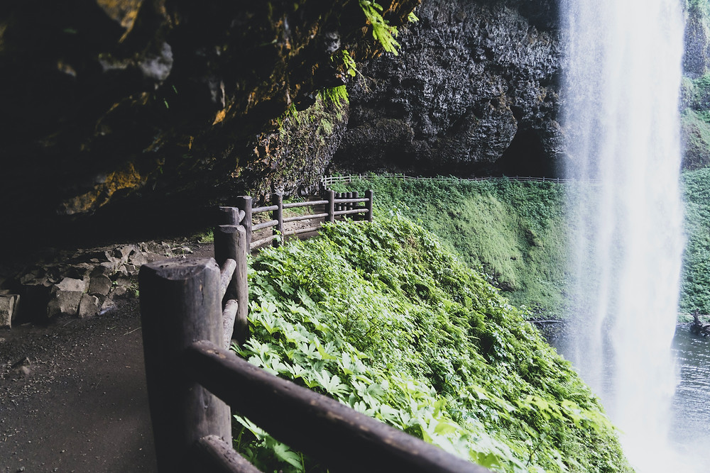 The Silver Falls State Park Oregon