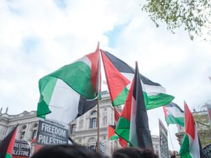 ELEVEN Asks You: Palestine