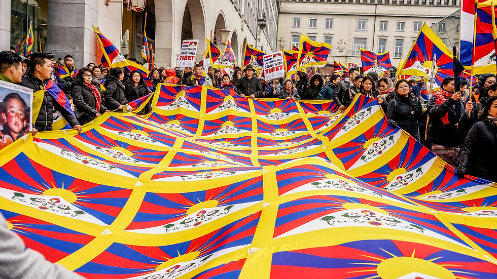 Crowd Flag Banner 4x9m