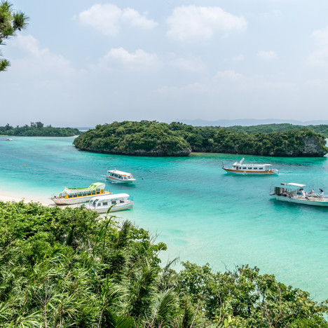 Visiting Okinawa on my year abroad in Japan - What to Eat?
