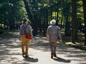 Health Walks at Central Park