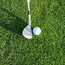 Foursome golf team $450