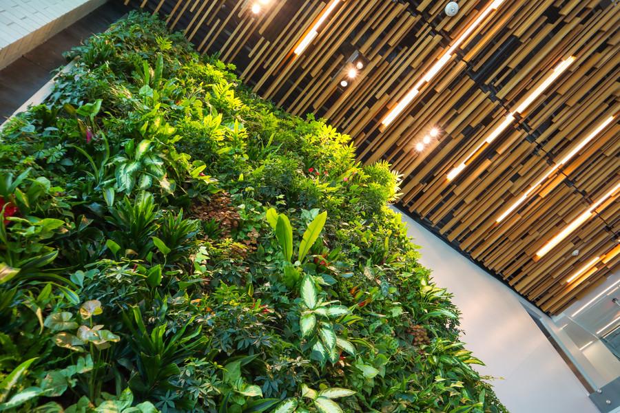 Landscape Design By Joe Jrs Services