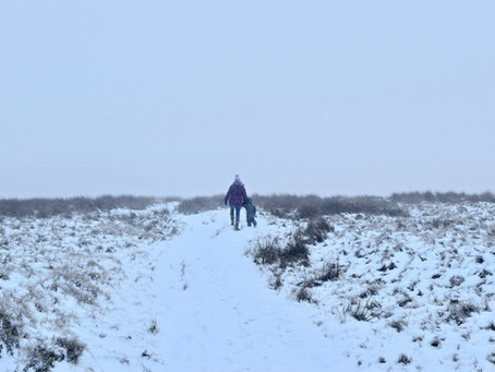 Molesey Mama Recommends... Local Wintery Walks