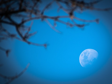 BLUE/Full Moon in Taurus: All Hallows' Eve brings Security, Secrets & Passion for Beauty!