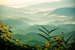 Image de Panuson Norkaew