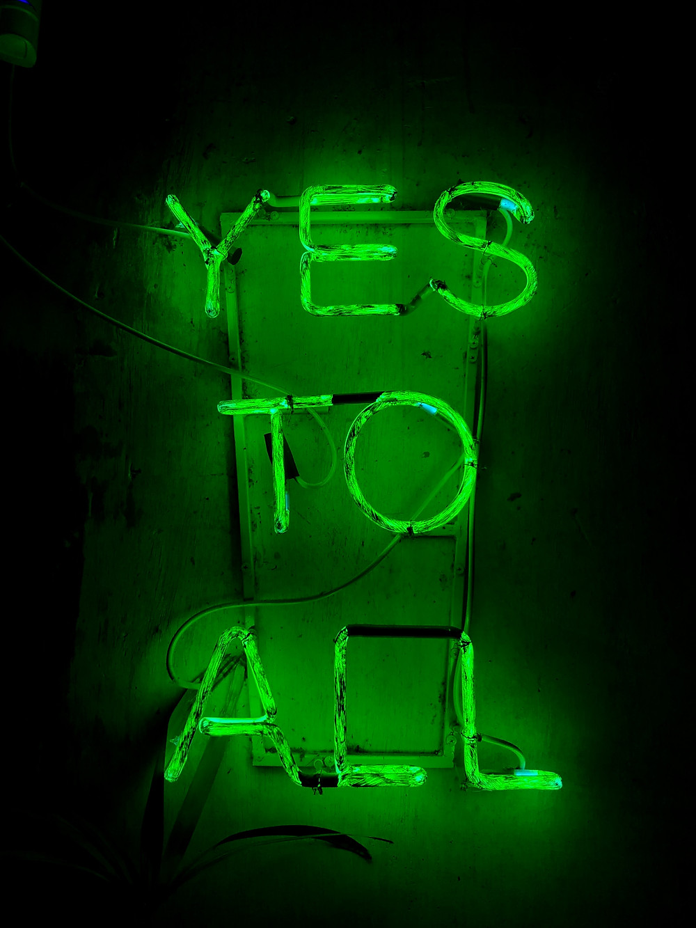 Green Neon Sign says Yes To All, The Image Tree Blog, What's Your Style Personality?