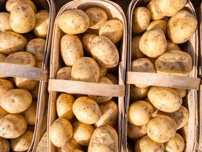 Guest Journey of Customer Journey. Potato/potato?