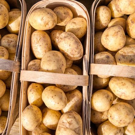 The most delicious potato salad (even if you don't like potato salad)