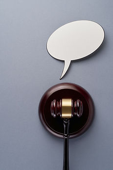 International Property Lawyers Provision