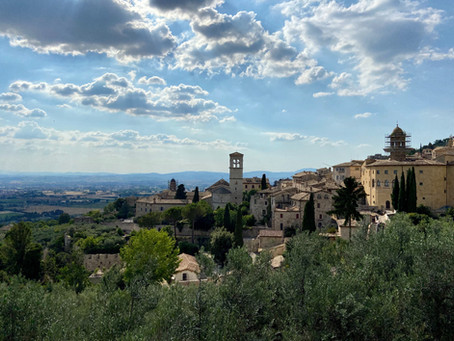 Assisi / Cortona // 2018