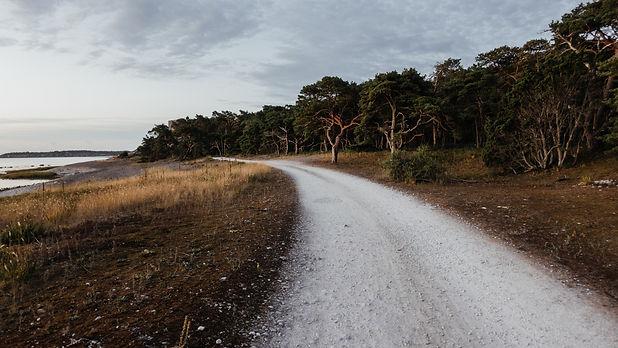 Image by Niklas Veenhuis
