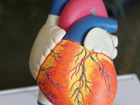 Les bienfaits de l'hydrogène moléculaire H2 sur le cœur