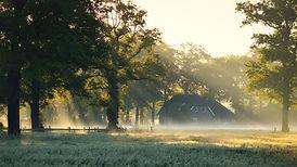Image by Erik van Dijk