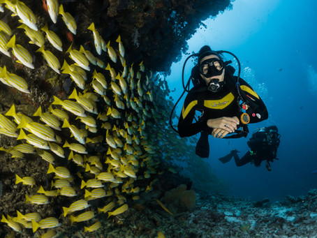 Why Diving Is Amazing For Mental Health!