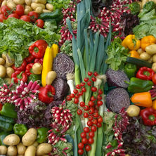 Vegetable Waste Electricity