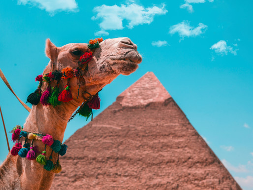 Travel Egypt: Tracing Ancient Egypt's Greatest Legends