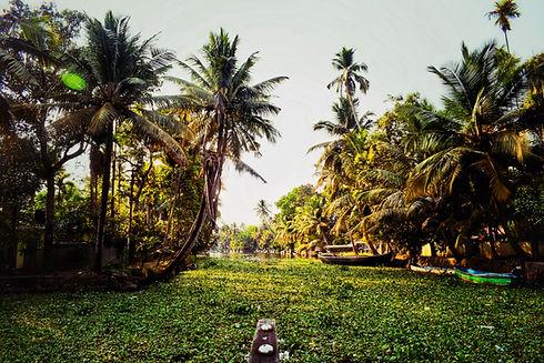 Image by Baris Karguwal