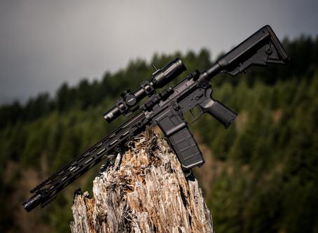 Why Anyone Needs an AR15