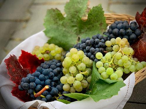 Seedless Grapes 500g