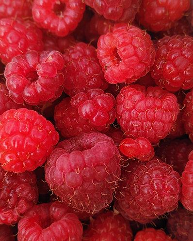 Raspberry Vanilla Bath Bomb