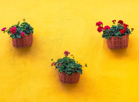 Add some color to your porch with these three eye catching planters
