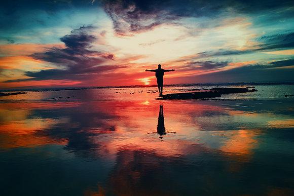 Intro to freedom harmonics