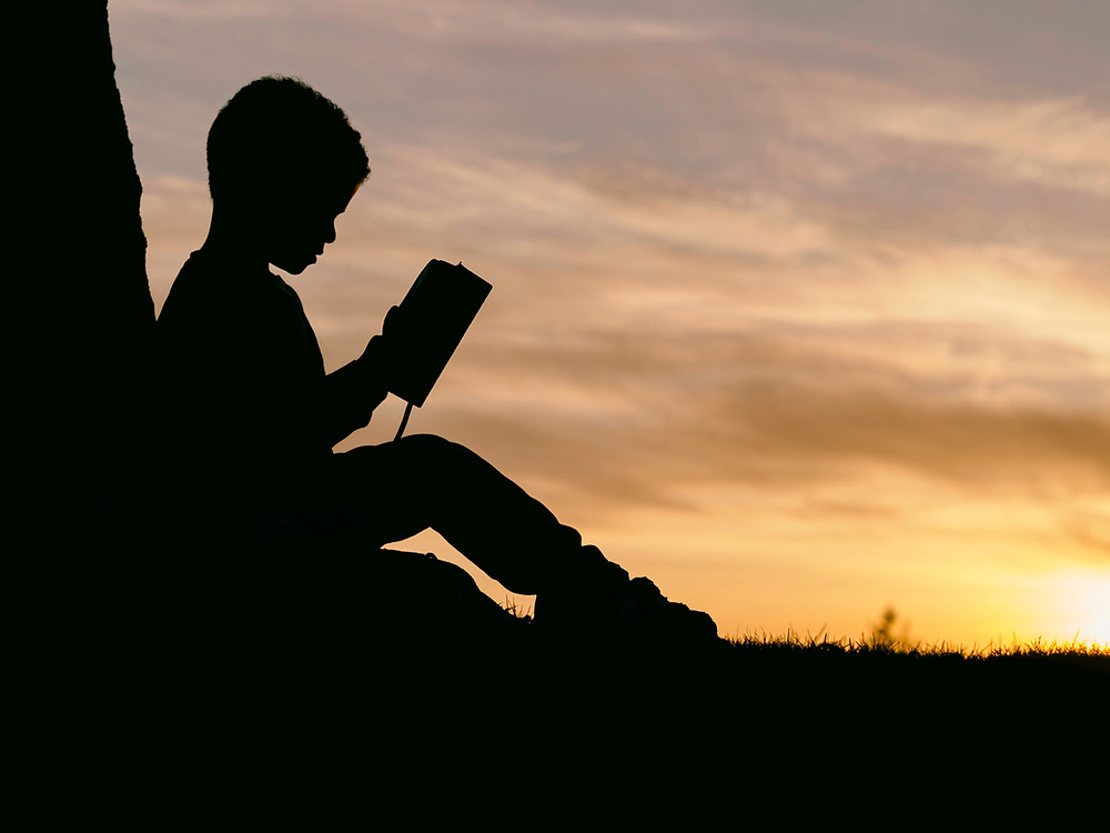 boy reading book outside during sunset