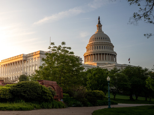 The Circular Economy (pt. 4): What's the Government Got to Do With It?