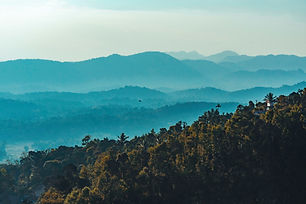 Image by Deepak P