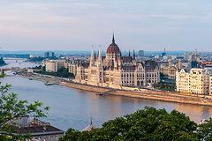 DEBRA Hungary