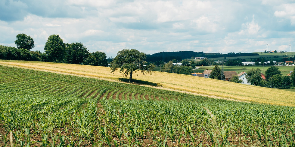 On-line konzultace - zemědělské obory