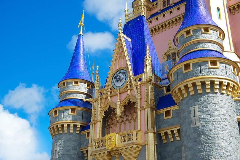 Walt Disney World Image by Brian McGowan