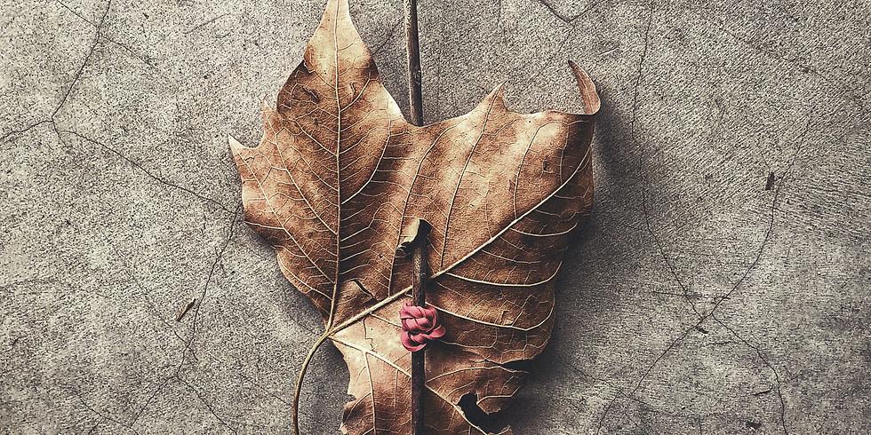 Jewish Leaf and Stick Art