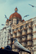 A Brief about Architecture in Mumbai:
