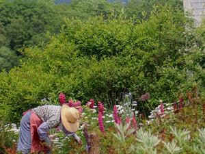 Interpersonal Effectiveness Skill: Boundary Garden