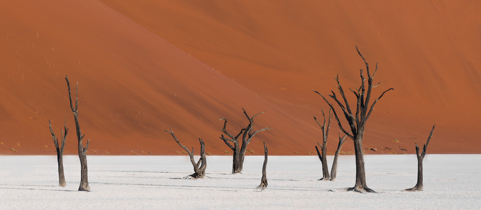 Dreaming of Namibia: The Ultimate Social Distancing Destination