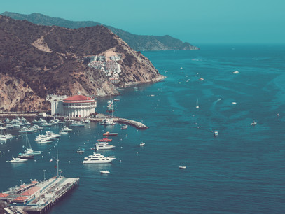 Things to Do On Catalina Island [THAT NO ONE ELSE IS TALKING ABOUT]