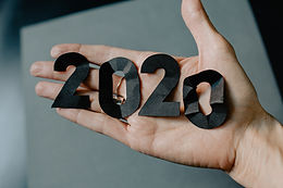 2020 ~ what a year!