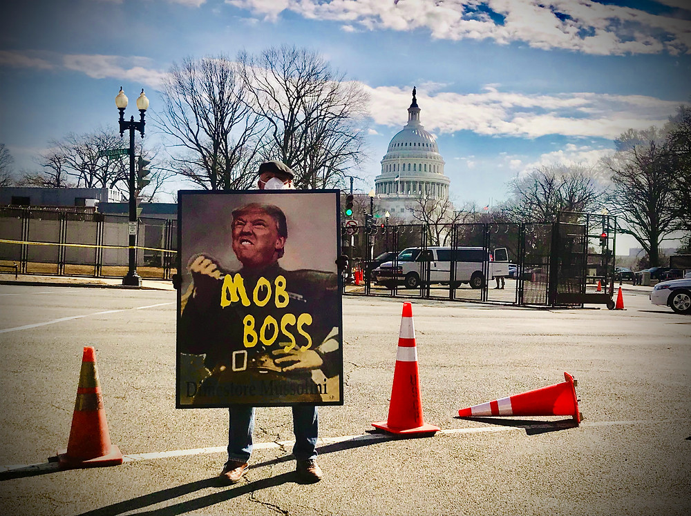 Donald Trump mob boss in front of the capitol