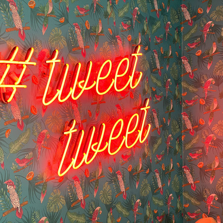 Social Media Corner: Have You Been Sucked into the Twitterverse with No Way Out?